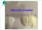 물질 대사 증가 DHEA Prohormone Epiandrosterone 남성홀몬 뚱뚱한 가열기 스테로이드