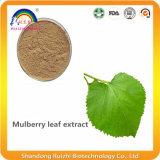 Выдержка листьев шелковицы для заболевания сахара крови