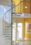 木のステップのステンレス鋼の螺旋階段