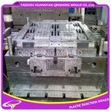 Fabrikant van de Vorm van de Injectie van de Pallet van de hoge Precisie de Plastic