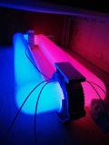 Inducción magnética de alta potencia LED de luz de la planta crezca con UL&Certificación TUV Reflector perfecto