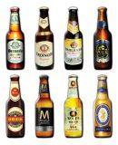 Bottiglia da birra di legno con il modello