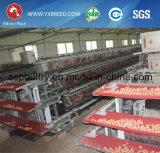 Gabbia di batterie dell'azienda agricola di pollo delle attrezzature agricole dell'Algeria per le galline ovaiole con il dispositivo di raffreddamento del rilievo (A3L120)