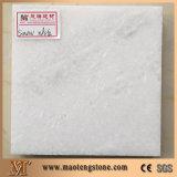 Lastre di pietra di marmo bianche dell'Italia Bianco Carrara