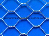Compensation de fil hexagonale avec chaud plongée galvanisé après tissage