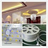 クリスマスの装飾のためのSMD5050 10W/M 60LEDs/M LEDのストリップランプ