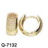 Oro dell'argento 14 dei monili 925 di modo placcato intorno agli orecchini della CZ