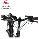 "Черного безщеточного Bike En15194 мотора 250W 20 "" электрический складывая (JSL039S-1)"