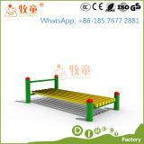 Fábrica China (MT/OP/FE1) del equipo de la aptitud de Technogym