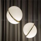 Lâmpadas Suspensive acrílicas do pendente do desenhador europeu para a iluminação decorativa do hotel