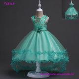 La muchacha de flor viste las primeras alineadas de Commuion de los vestidos formales de las muchachas