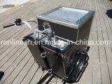 250W/350W/500W o el pedal eléctrico de 3 ruedas moto de Carga/Carga Trike/carga/triciclo triciclo rollo Helado/carga bicicleta/bicicleta de la entrega de rodillo de helados