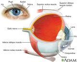 Solutão Viscoelastico para Auxílio Cirúrgico Oftálmico