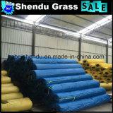 grama artificial de exportação profissional da qualidade 2X25m/Roll