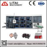 Volle automatische Ei-Tellersegment Thermoforming Maschine