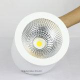 セリウムRoHSは18-30W表面の取付けられた天井の照明LED Downlightを承認した