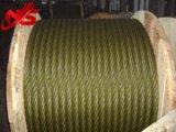 Corda dorata del filo di acciaio di colore 6X36sw+Iwrc di auto del grasso