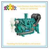 Generator de Van uitstekende kwaliteit Wp10/Wp12/W13 van het Land van Weichai met Bevredigende Prijs
