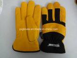 Зимние драйвера Glove-Leather Glove-Gloves Glove-Thisulate Glove-Work - Облицовка крышки вещевого ящика