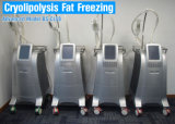 Cryolipolysis refroidir la sculpture du point de congélation de la lipolyse Cryolipolysis Fat plus mince de gel