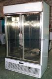 Красивейший холодильник индикации двери смотря стекла