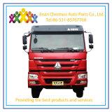 Grote Zware Vrachtwagen 380 van China Sinotruck HOWO de Vrachtwagen van de Stortplaats van de Paardekracht 6*4 6m