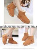 Горячий снежок женщин сбывания Boots фабрика ботинок вскользь ботинок (FF-3)