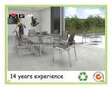 스테인리스 프레임을%s 가진 옥외 정원 의자