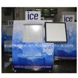 Одобренное Ce замерзая хранение льда 38cu. FT с произведением искысства логоса