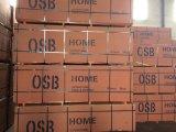 OSB3 goedkopere Prijs 6mm 9mm 12mm 18mm 30mm