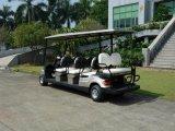 Il commercio all'ingrosso 4 spinge l'automobile elettrica di golf delle 8 sedi