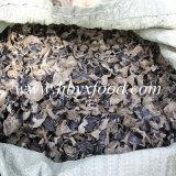 Hormiga negra seca / Oído de nube / Oído de madera / Vegetal comestible con caja de regalo independiente