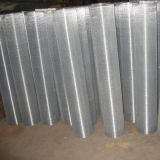 塗られた電流を通された/PVCは金網を溶接した