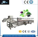 De Schoonmakende Machine van de Luchtbel van Mutifunctional van het roestvrij staal Voor Wortelen