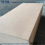 19 Plies 28mm del suelo de madera contrachapada de contenedor de envío