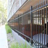 Clôture bon marché noire chaude de jardin de la rafale Pow+Gal