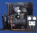 Cold 룸을%s 압축기 Copeland Compressor/Copeland Condensing Unit
