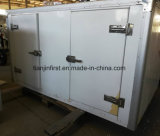 Van Cargo draagt de Electric Driewieler van de Koeling/de Vrachtwagen van de Melk/van het Roomijs