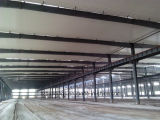 Venta caliente costada el edificio industrial eficiente de la vertiente de la estructura de acero