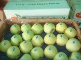 新しい緑のおいしい金Apple