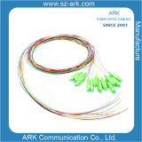 La fibra óptica monomodo 2 Core
