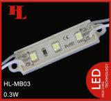 3 colla di PCS 3528 SMD che riempie + modulo di plastica dell'Non-Iniezione LED delle coperture
