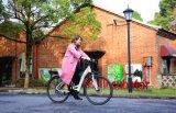 bici eléctrica de la ciudad 2018 700c con el motor medio