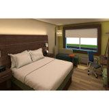 Holiday Inn формула синего цвета отеля мебель ламината