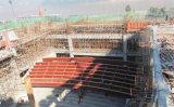 De Bouw van het staal/de Structuur van het Staal/het Hof van Stadions