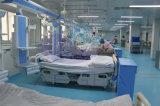 AG-45 수술장 의료 기기 플래트홈 두 배 팔 펜던트