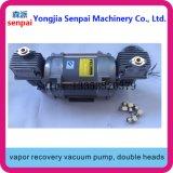 Stomp de Vacuümpomp van de Pomp van de Terugwinning van de Damp van dubbel-Hoofden 220V/380V af