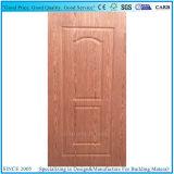 신식 주조된 문 피부 합판 또는 문 위원회