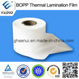 Film de laminage thermique BOPP + EVA pour impression offset - 24 mm brillant