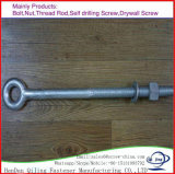 DIN444 métrique du boulon à oeil en acier inoxydable taille Petit et Heavy Duty